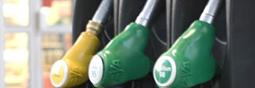 Le prix du pétrole, c'est élastique