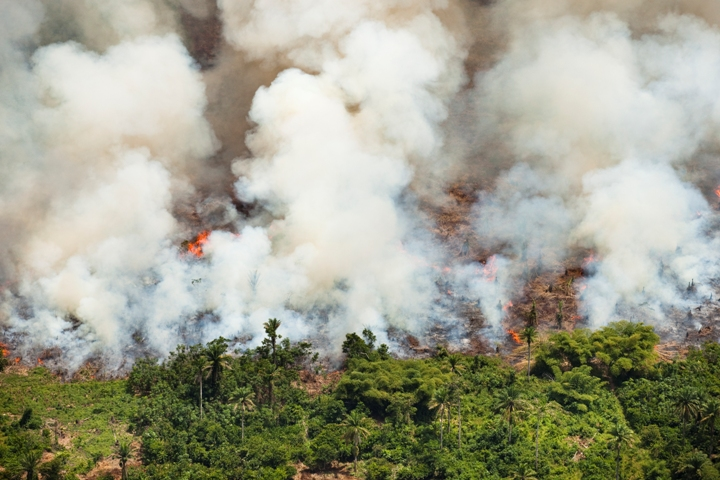 Déforestation par le feu en RDC © Daniel Beltra. Courtesy of The Princes Rainforests Project & Sony