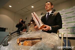Junichi Sato, de Greenpeace, présente à la presse de la viande de baleine volée, en 2008. Il risque 18 mois de prison © Greenpeace