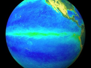 Développement du plancton pendant le El Niño de 1998 © Nasa