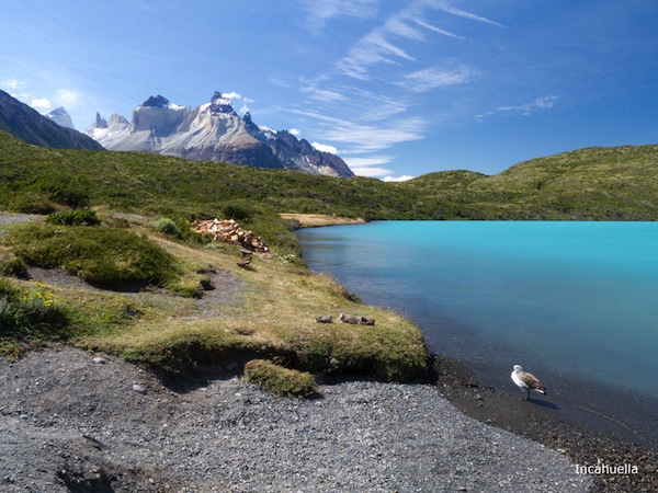 Au bord du lac Peho (Chili) © Incahuella