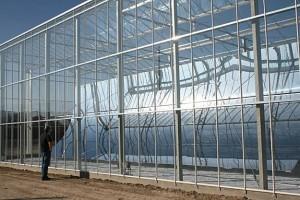 La centrale solaire à vapeur de GlassPoint Solar © GlassPoint Solar