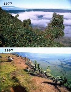 Vue du volcan Alcedo sur l'île Isabela, avant et après l'invasion des chèvres. © Tui de Roy